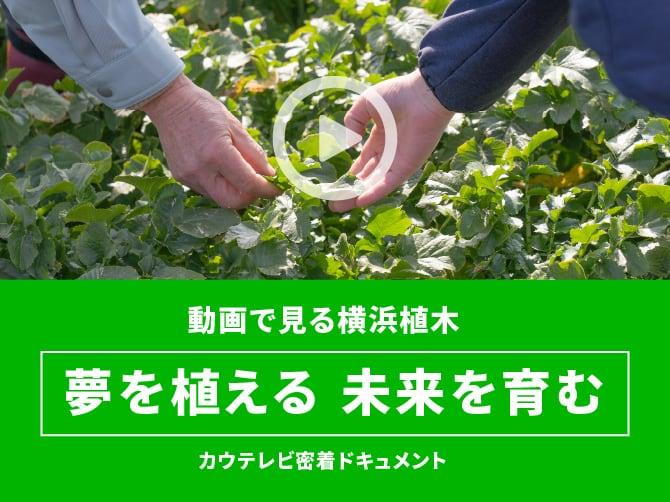 動画で見る横浜植木「夢を植える  未来を育む」カウテレビ密着ドキュメント